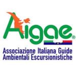 aigae_logo